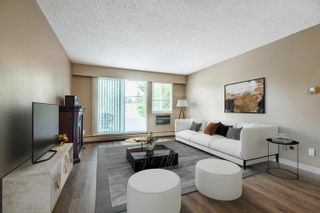 """Photo 5: 210 12096 222 Street in Maple Ridge: West Central Condo for sale in """"CANUCK PLAZA"""" : MLS®# R2608661"""