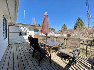 Photo 22: 201 Cross Street South in Outlook: Residential for sale : MLS®# SK851005