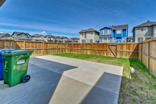 Photo 29: 7 SKYVIEW RANCH Crescent NE in Calgary: Skyview Ranch Detached for sale : MLS®# A1109473