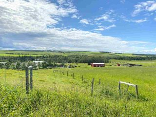Photo 25: 15169 271 Road in Fort St. John: Fort St. John - Rural W 100th Manufactured Home for sale (Fort St. John (Zone 60))  : MLS®# R2573790