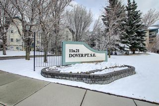 Photo 46: 110 11 Dover Point SE in Calgary: Dover Apartment for sale : MLS®# A1096781