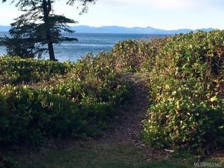 Photo 13: 2892 Fishboat Bay Rd in : Sk French Beach House for sale (Sooke)  : MLS®# 863163