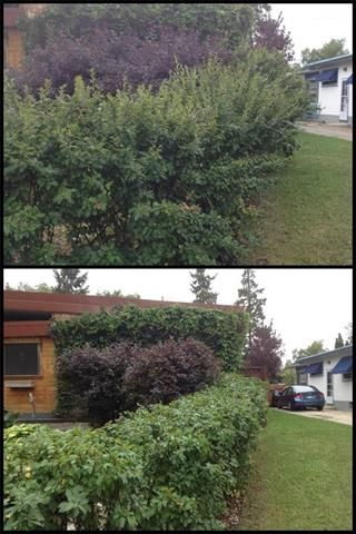 Photo 15: 165 Forest Park Drive in Winnipeg: Residential for sale (4G)  : MLS®# 1911805