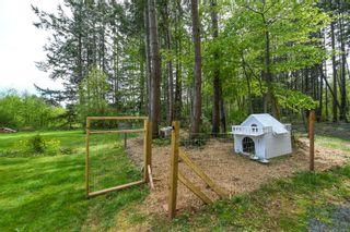 Photo 43: 7353 N Island Hwy in : CV Merville Black Creek House for sale (Comox Valley)  : MLS®# 875421