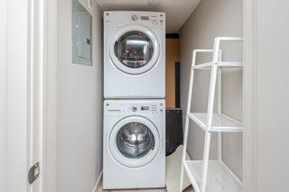 Photo 21: 256 7805 71 Street in Edmonton: Zone 17 Condo for sale : MLS®# E4266039