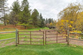 Photo 41: 74 53103 RGE RD 14: Rural Parkland County House for sale : MLS®# E4265668
