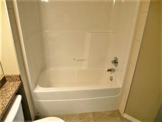 Photo 15: 312 1520 HAMMOND Gate in Edmonton: Zone 58 Condo for sale : MLS®# E4234650