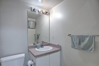 Photo 30: 110 11 Dover Point SE in Calgary: Dover Apartment for sale : MLS®# A1096781