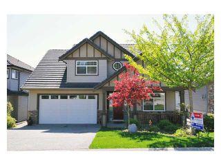 "Photo 1: 23708 ROCK RIDGE Drive in Maple Ridge: Silver Valley House for sale in ""ROCKRIDGE ESTATES"" : MLS®# V854712"