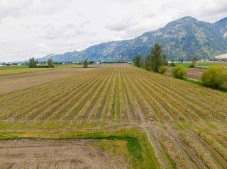 Photo 38: 5111 TOLMIE Road in Abbotsford: Sumas Prairie House for sale : MLS®# R2573312