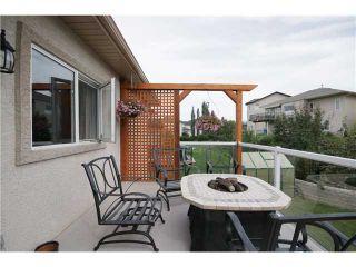 Photo 19: 224 SUNTERRA RIDGE Place: Cochrane Residential Detached Single Family for sale : MLS®# C3633482