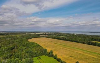 Photo 35: 19375 Mississaugas Trail Road in Scugog: Port Perry House (Sidesplit 4) for sale : MLS®# E5386585