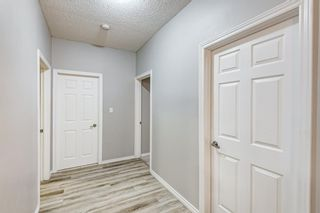 Photo 17: 8 1441 23 Avenue in Calgary: Bankview Apartment for sale : MLS®# A1145593