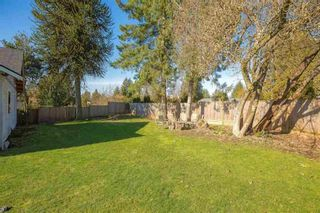Photo 14: 11783 221 Street in Maple Ridge: West Central House for sale : MLS®# R2553448