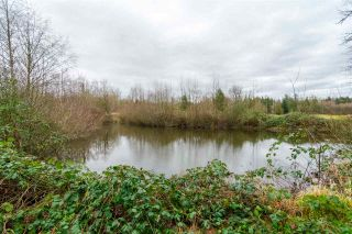 Photo 18: 932 240 Street in Langley: Otter District House for sale : MLS®# R2232971