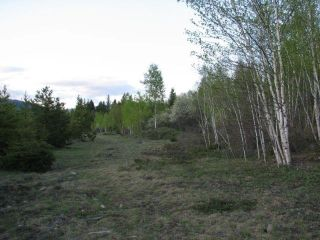 Photo 3: SW 1/4 DL 1680 ROAD 2A FSR in No City Value: Out of Town Land for sale : MLS®# R2603759