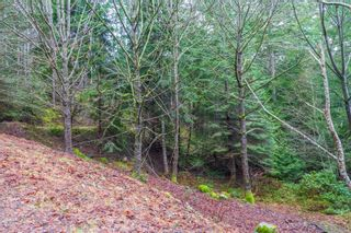 Photo 7: 2604 Yardarm Rd in : GI Pender Island Land for sale (Gulf Islands)  : MLS®# 863927