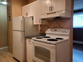 Photo 13: 104 9120 106 Avenue in Edmonton: Zone 13 Condo for sale : MLS®# E4248388