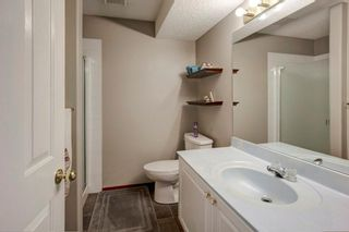 Photo 28: 325 CORAL SPRINGS Place NE in Calgary: Coral Springs Detached for sale : MLS®# A1066541