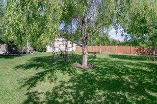 Photo 34: 64 Edelweiss Crescent in Niverville: R07 Residential for sale : MLS®# 202013038
