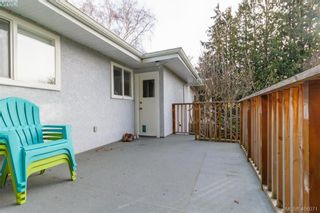 Photo 18: 420 Richmond Ave in VICTORIA: Vi Fairfield East House for sale (Victoria)  : MLS®# 806983