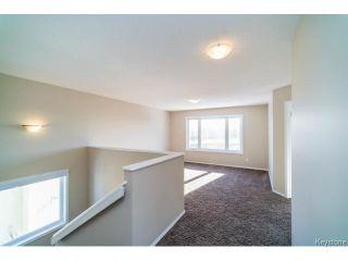 Photo 11: 117 Drew Street in WINNIPEG: Fort Garry / Whyte Ridge / St Norbert Residential for sale (South Winnipeg)  : MLS®# 1504606