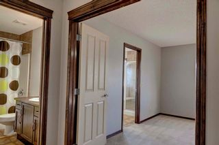 Photo 16: 279 CHAPALINA Terrace SE in Calgary: Chaparral House for sale : MLS®# C4128553