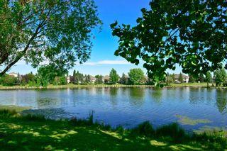 Photo 7: 124 HARVEST PARK Way NE in Calgary: Harvest Hills Detached for sale : MLS®# A1018692