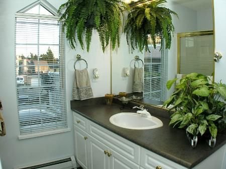 Photo 11: Photos: Ocean View in White Rock - see additional information for marketing brocure.