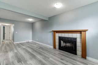 Photo 28: 23 Erin Meadows Court SE in Calgary: Erin Woods Detached for sale : MLS®# A1146245