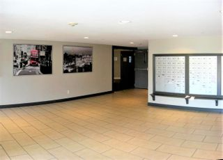 """Photo 18: 430 5660 201A Street in Langley: Langley City Condo for sale in """"Paddington Station"""" : MLS®# R2596391"""