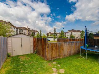 Photo 26: 115 Cimarron Grove Crescent: Okotoks Detached for sale : MLS®# C4303234