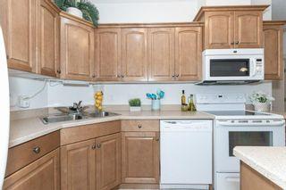 Photo 6: 225 9820 165 Street in Edmonton: Zone 22 Condo for sale : MLS®# E4261600