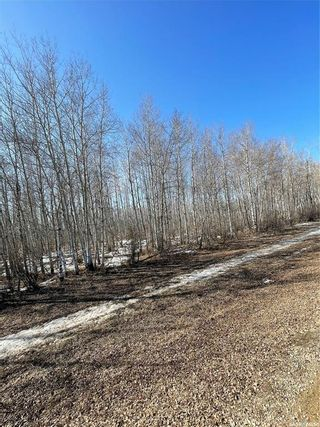 Photo 20: 65 acres land in Preeceville: Lot/Land for sale : MLS®# SK848653