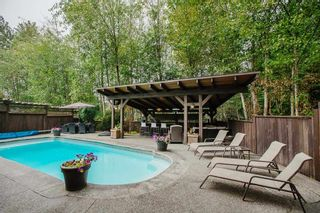 """Photo 35: 24625 MCCLURE Drive in Maple Ridge: Albion House for sale in """"THE UPLANDS"""" : MLS®# R2498339"""