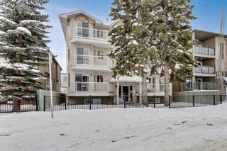Photo 15: 302 215 17 Avenue NE in Calgary: Tuxedo Park Apartment for sale : MLS®# A1071484