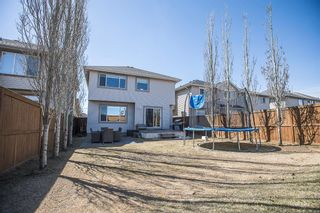 Photo 36: 164 Royal Oak Heights NW in Calgary: Royal Oak Detached for sale : MLS®# A1100377