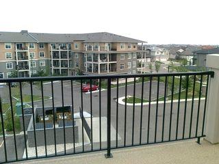 Photo 22: 437 6076 SCHONSEE Way in Edmonton: Zone 28 Condo for sale : MLS®# E4262572