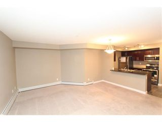 Photo 14: 9104 403 Mackenzie Way SW: Airdrie Apartment for sale : MLS®# A1122241