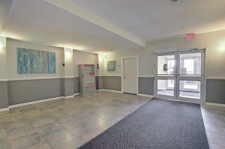 Photo 48: 217 10523 123 Street in Edmonton: Zone 07 Condo for sale : MLS®# E4236395
