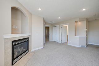 Photo 21: 10345 93 Street in Edmonton: Zone 13 House for sale : MLS®# E4251011