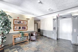 Photo 30: 414 2 Hemlock Crescent SW in Calgary: Spruce Cliff Apartment for sale : MLS®# A1122247