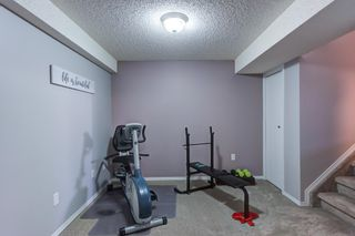 Photo 34: 12 Willowbrook Crescent: St. Albert House for sale : MLS®# E4264517