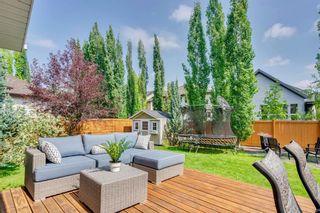 Photo 35: 22 ELGIN ESTATES Grove SE in Calgary: McKenzie Towne Detached for sale : MLS®# A1019563