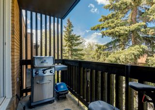 Photo 17: 404 507 57 Avenue SW in Calgary: Windsor Park Apartment for sale : MLS®# A1112895
