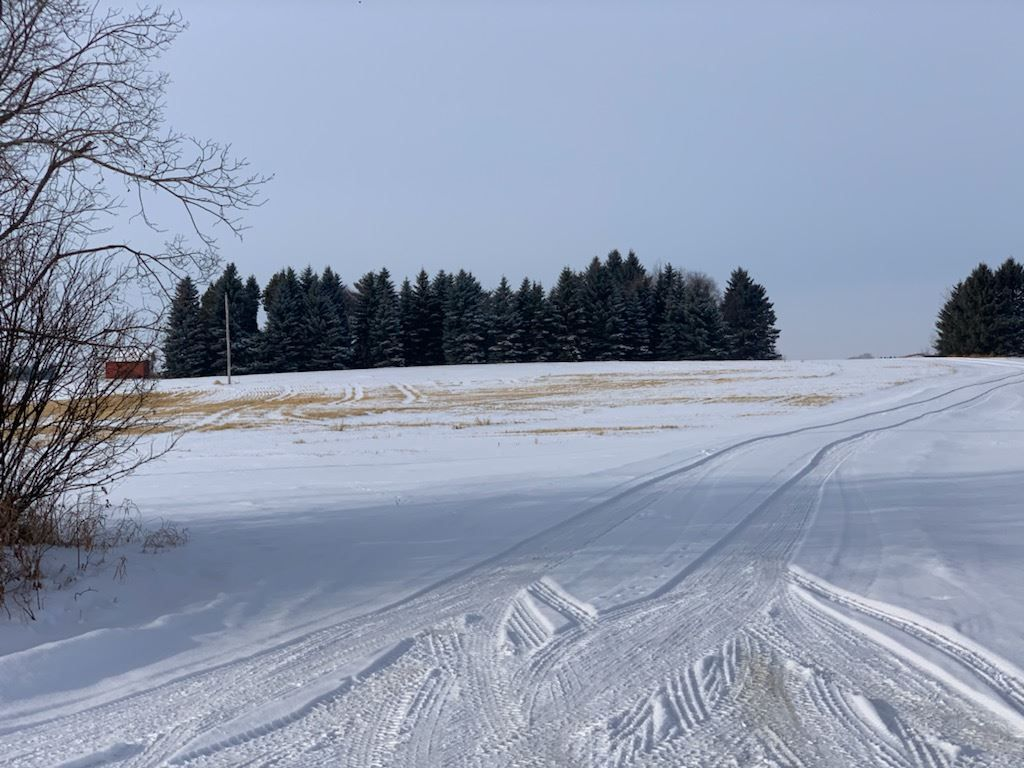 Main Photo: 8686 279 Street: Rural Parkland County House for sale : MLS®# E4227083