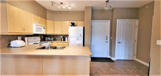 Photo 12: 410 1406 HODGSON Way in Edmonton: Zone 14 Condo for sale : MLS®# E4223592