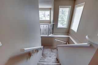 Photo 34: 131 Citadel Crest Green NW in Calgary: Citadel Detached for sale : MLS®# A1124177
