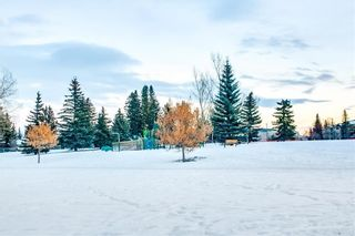 Photo 31: 209 1939 30 Street SW in Calgary: Killarney/Glengarry Apartment for sale : MLS®# A1076823