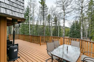 Photo 29: 231167 Forestry Way: Bragg Creek Detached for sale : MLS®# A1111697
